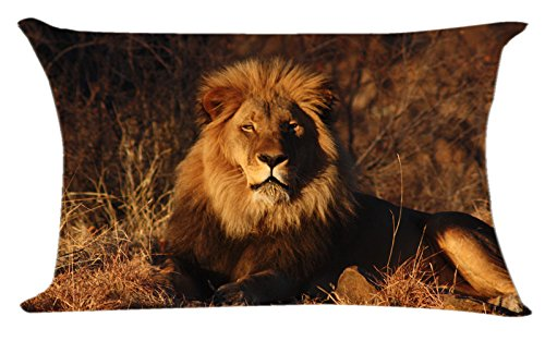 Decorative Cotton Square Throw Pillow Cover with Lion King Pillowcase Size 16X24inches Print Two Sides