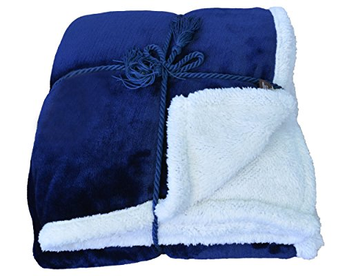 Sherpa Throw Blanket Blue 50 x 60 Reversible Bed Throw TV Blanket Super Soft Micro Mink Fleece Couch Blanket Comfort Caring Gift