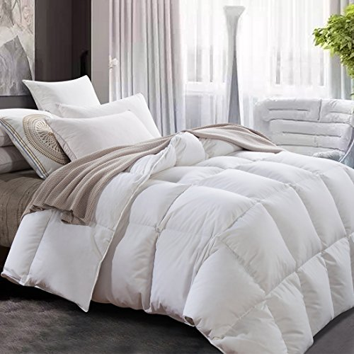 Luxurious All Seasons White Goose Down Comforter-Solid White Hypo-allergenic Duvet Insert 1000 Thread Count 700Fill Power 100 Cotton Shell Down Proof With Tabs  Queen White  Lightweight Warmth