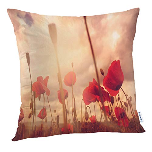 Batmerry Poppy Pillow Cover 18x18 Inch Poppy Field and Sun Day Poppy Red Beauty Color Colors Frame Full Double Sided Square Pillow Cases Pillowcase Sofa Cushion