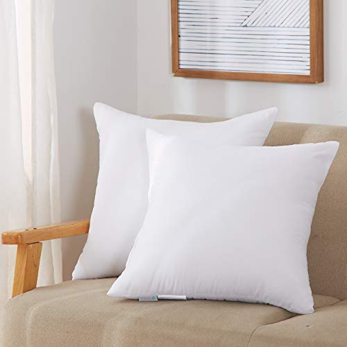 Acanva Throw Pillow Inserts Soft Couch Stuffer Hypoallergenic Polyester Square Form Washable Cushion Euro Sham Filler 22-2P White